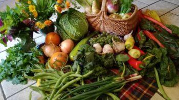 Permalink auf:Speisereise durch die Lausitz